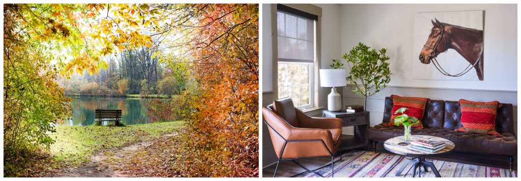 Fall Interiors - Stable View